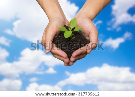 close up on human hands gesture holding a little growing plant over blurred sky backgrounds : Safe the world concept,ecology system concept.safe the world concept.selective focused. - stock photo