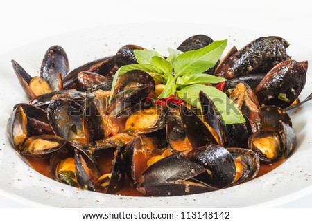 close up on mussels on white background - stock photo