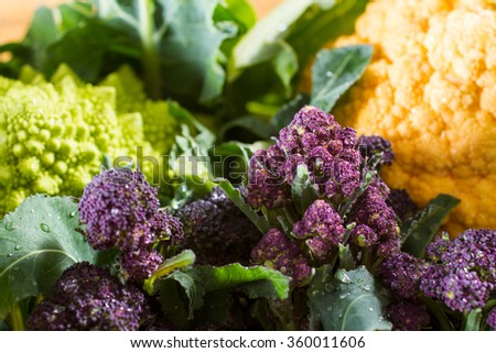 Close up on purple broccoli, with yellow cauliflower and romanesco cauliflower in the background. Wonderful contrast of complementary colours. - stock photo