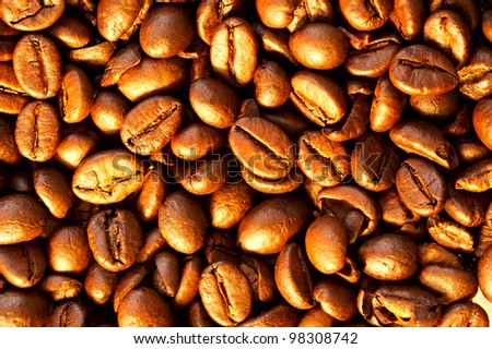 Close-up photo of coffee beans - stock photo