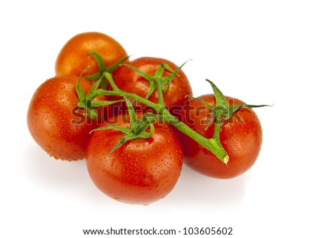 Close-up photo of fresh organic tomatoes with water drops and shallow dept of field
