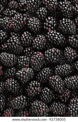 Close-up photograph of fresh, ripe blackberries - stock photo