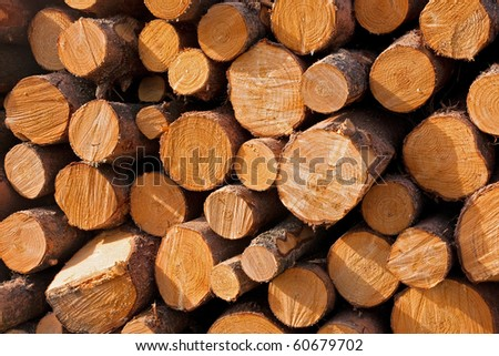 Close-up photograph of the pile of wood - stock photo
