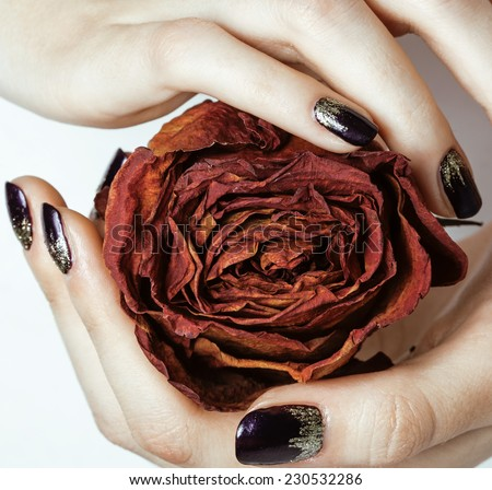 close up picture of manicure nails with dry flower red rose - stock photo