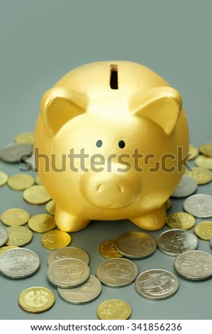 Close up piggy bank with coins - stock photo
