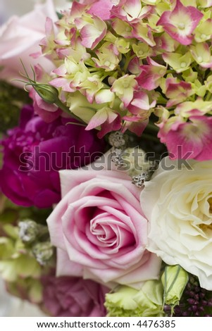 close up pink tipped hydrangeas with roses pink white and fuschia - stock photo