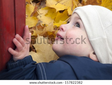 Close up portrait of a child toddler in autumn or fall leaves at playground.