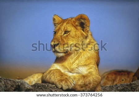 Close up portrait of young lion in Tanzania,photo art - stock photo
