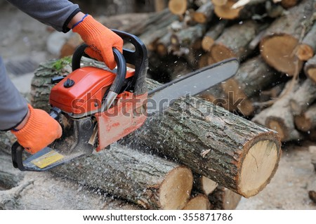 Close-up professional chainsaw blade cutting log of wood