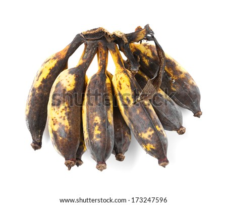 Close up Rotten cultivated banana isolated on white - stock photo