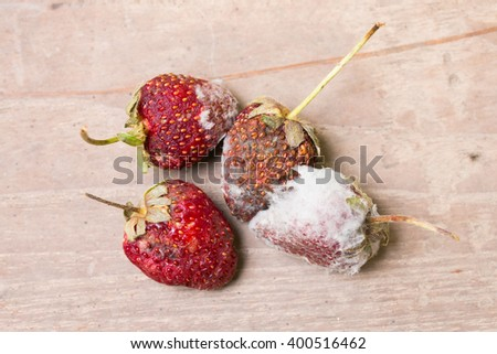 Close up Rotten strawberries on old wooden table - stock photo