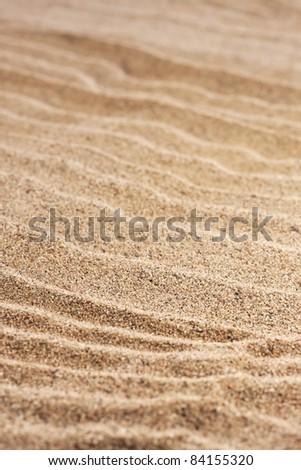 close up  sand background - stock photo