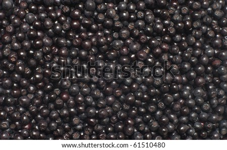 Close up shot background of aronia berries.