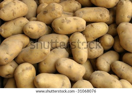 Close up shot of a group of potato in the market