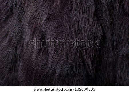 close up shot of abstract fur background - stock photo
