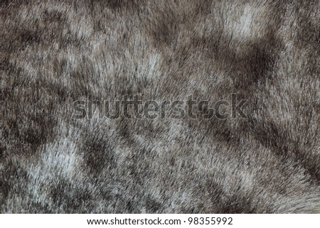 close-up shot of abstract fur background (texture) - stock photo