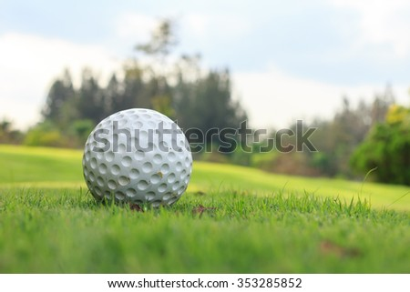 close up shot of white golf ball on green