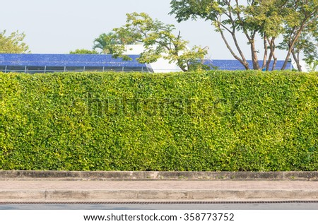 close up tree fence in garden - stock photo