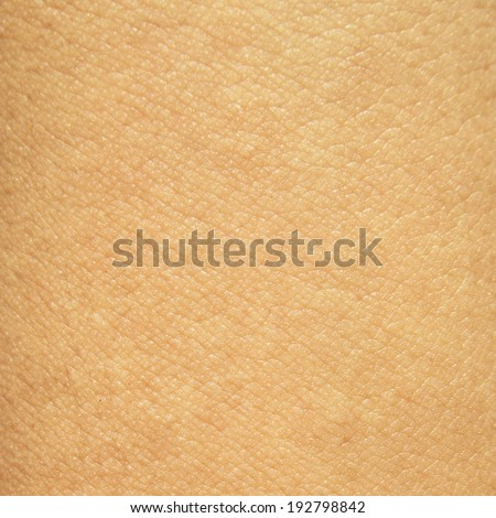 close up view of a human skin - stock photo