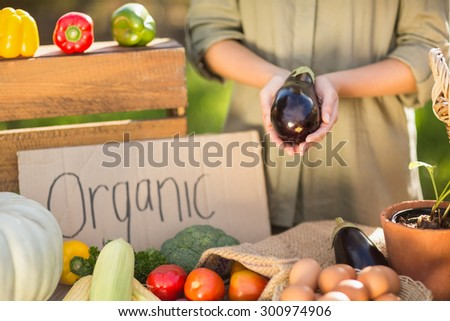 Close up view of a woman hands showing an aubergine - stock photo