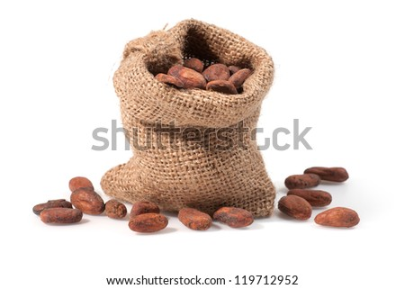 Close up view of Cocoa bean on bag. Shallow depth of field.