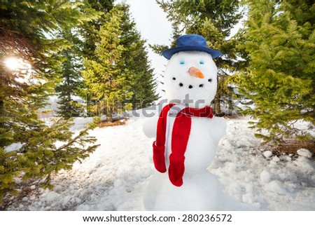 Close-up view of cute snowman with hat and scarf - stock photo