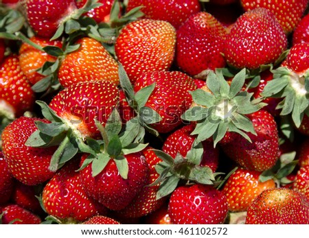 Close up view of fresh strawberries fruit