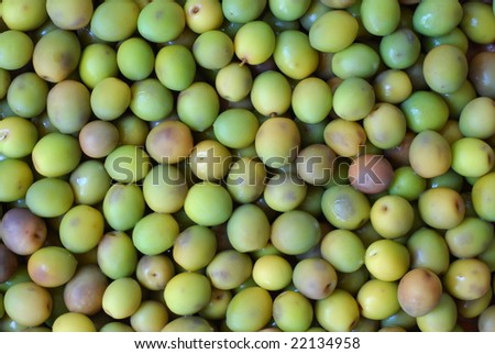 Close up view of green olive background