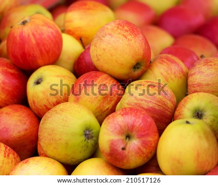 Close up view of red apples on the market - stock photo