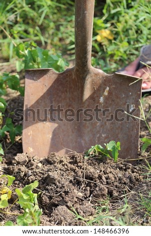 Close up view of someone digging with a shovel - stock photo
