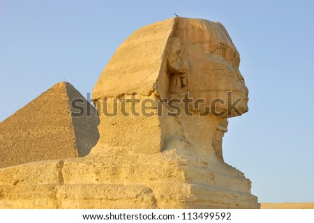 Close-up view of Sphinx - stock photo