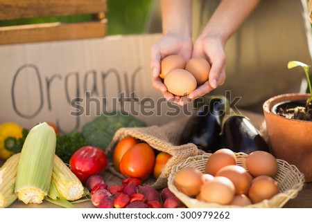 Close up view of woman hands showing three eggs - stock photo