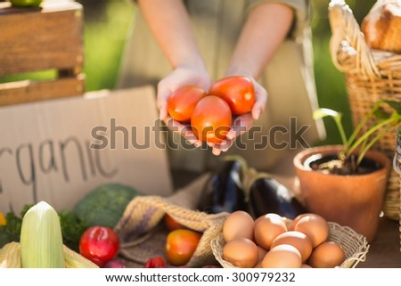 Close up view of woman hands showing three tomatoes - stock photo