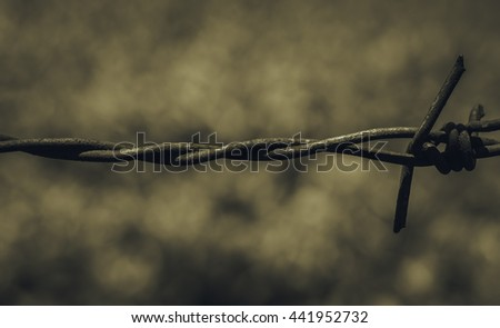 Close-up view segment of rusty barbed wire and cobweb against a blurred brown nature background of soil and grass. Detail old grunge iron fence of barb wire - stock photo