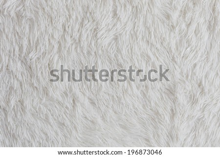 Close up white fur texture - stock photo