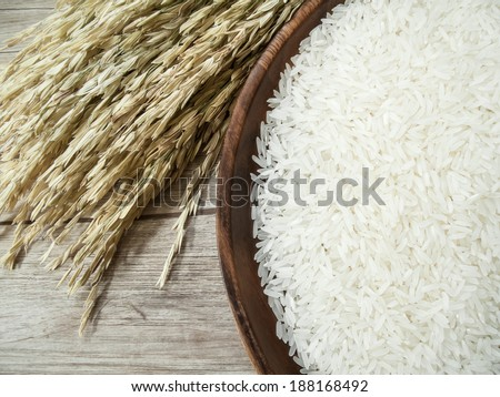 Close up white rice on the wooden plate and rice plant ,  uncooked raw cereals - stock photo