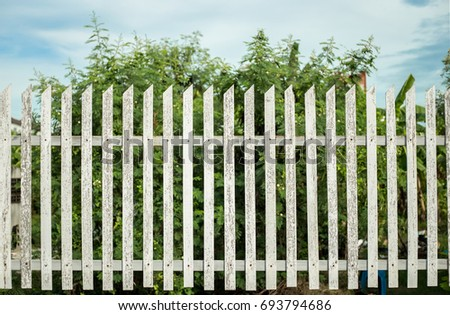 close up wood fence exterior garden or park in summer day for background