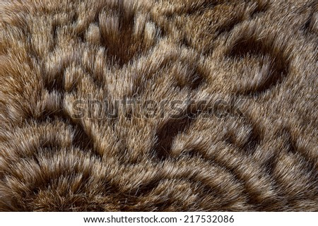 Close up wool for texture to background - stock photo