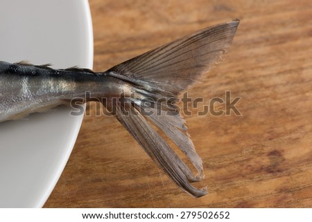 Close view of Atlantic Mackerel tail resting on white plate - stock photo