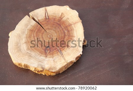 Close view of sliced wooden log used as a base for drilling pearl - stock photo
