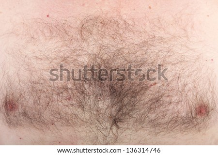 Closeup background detail of a mans hairy chest with nipples - stock photo
