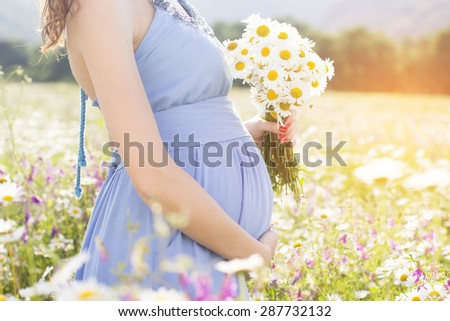 Closeup belly of pregnant woman, holding in hands bouquet of daisy flowers outdoors, new life concept - stock photo