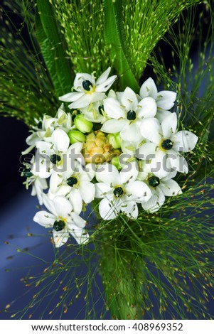 Closeup  black and white flowers, baby's breath on the dark background - stock photo