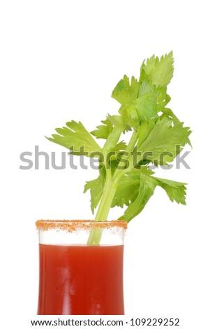 Closeup Caesar cocktail drink - stock photo