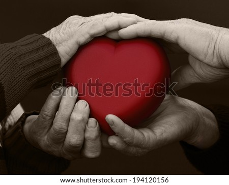 Closeup, cropped, isolated black white picture, hands senior, elderly people, woman, man, grandparents holding red heart. Human emotions, attitude. Old people health. Love, compassion, mother, father  - stock photo