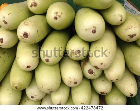 closeup fresh Gourds, vegetable for Asian  - stock photo