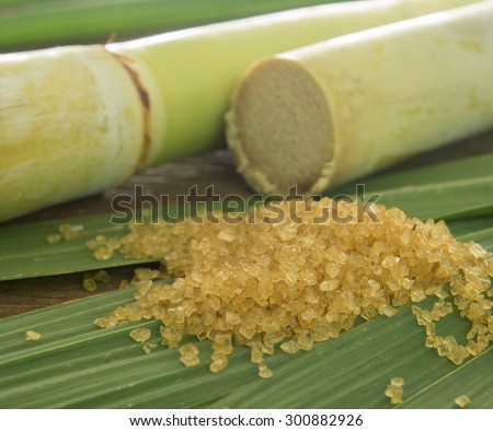 closeup granulated brown sugar on sugarcane leaves. - stock photo