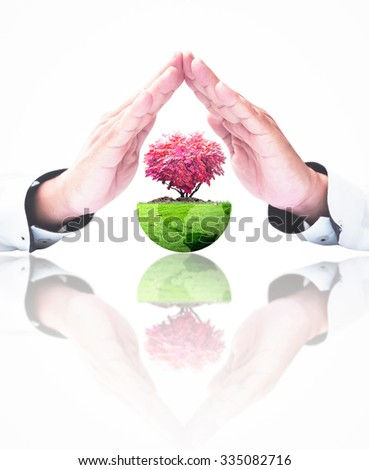 Closeup human hands and growing red tree in shape heart with a green earth globe of grass on white background. Health insurance, Insurance Agent, Love, Medical concept. - stock photo