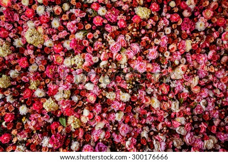 Floral Background Stock Images Royalty Free Images