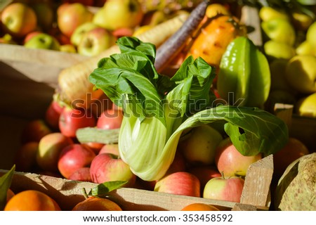 Closeup image of Chinese cabbage Bok Choy among exotic fruit and vegetables at farmers market
